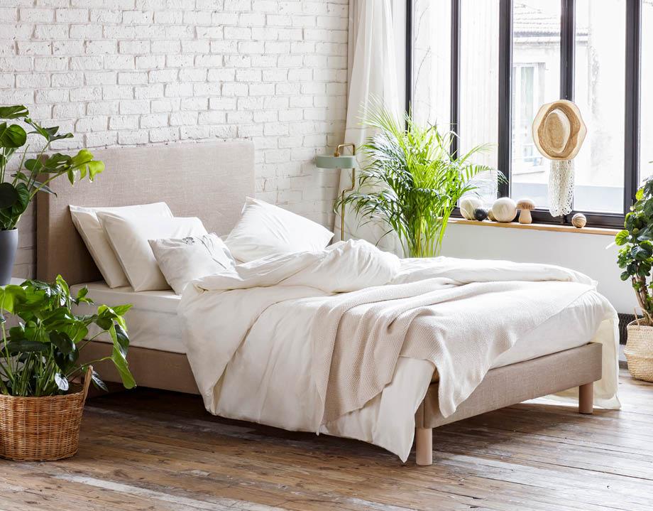Sommier tapissier habillé dans chambre lumineuse avec plantes