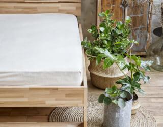 Matratzenschoner aus Bio-Baumwolle in Schlafzimmer mit Pflanzen